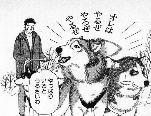 動物のお医者さん.jpg