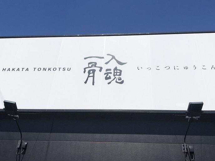 一骨入魂 味玉らーめん(かた)+焼き餃子+替玉
